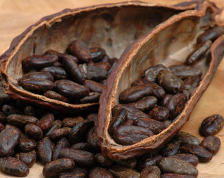 interesting facts about cacao beans