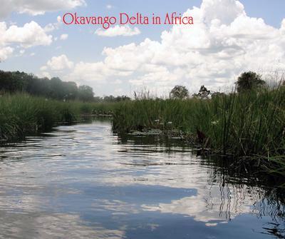 Okavango Delta in Africa