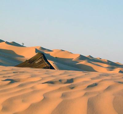 The sea of being rolled golden barkhans in Northern Sahara
